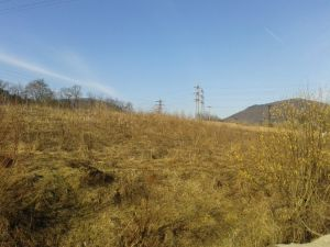 Predaj: Pozemok v Budatíne