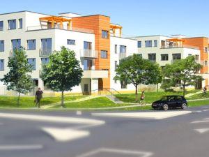 Dubová alej Novostavba Ivanka pri Dunaji