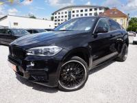 BMW X6 XDRIVE 40D M-PAKET TV TUNER