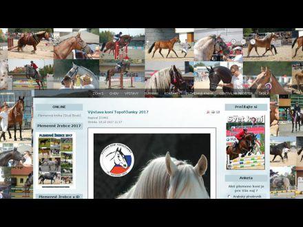 www.horses.sk