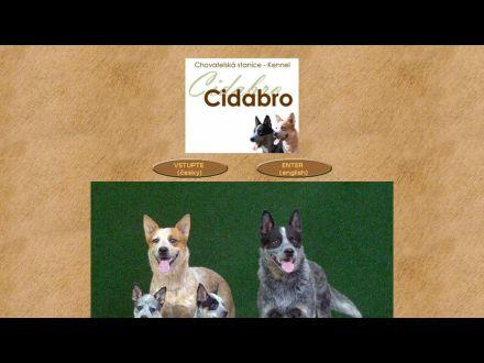 www.cidabro.cz