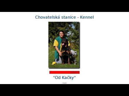 www.odkacky.com