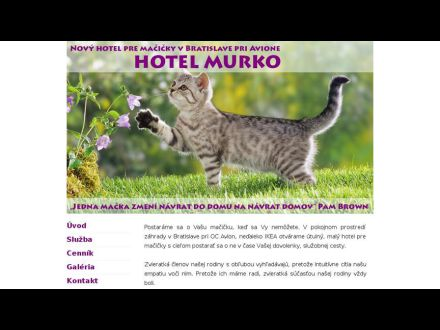 Hotel Murko - hotel pre mačky 213b7d2421c