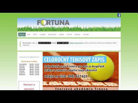 www.fortunais.sk