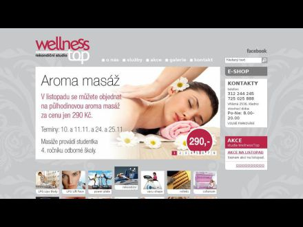 www.wellnesstop.cz