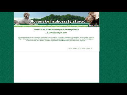 www.slovenskystavac.sk