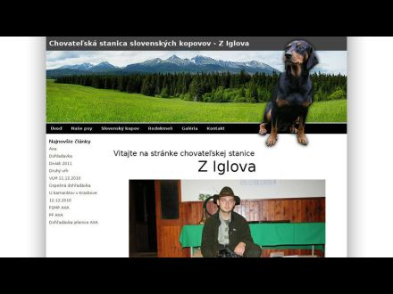 www.kopovyziglova.sk